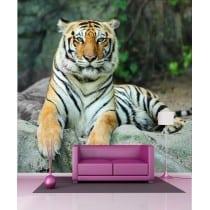 Stickers géant déco : Tigre