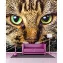 Stickers géant déco : chat