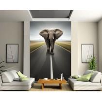 Stickers géant déco : elephant
