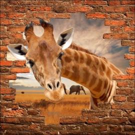 Sticker mural trompe l'oeil Girafe