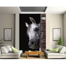 Stickers géant déco : cheval