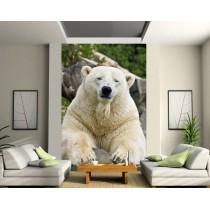 Stickers géant déco : ours blanc