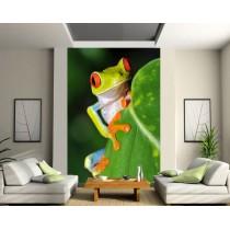 Stickers géant déco : grenouille