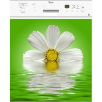 Sticker Lave Vaisselle Marguerite