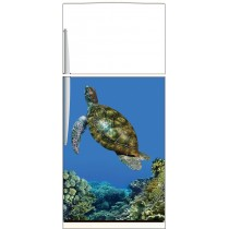 Sticker frigo Tortue - ou sticker magnet frigo