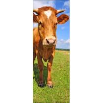 Papier peint porte déco - vache