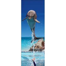 Papier peint porte déco - dauphin