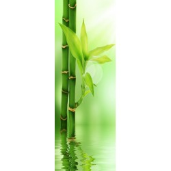 Papier peint porte déco - bambou