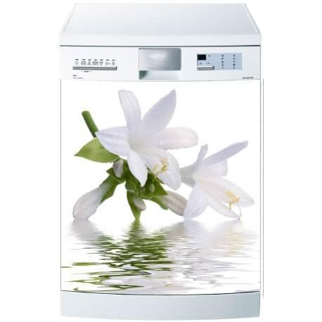 Stickers lave vaisselle ou magnet lave vaisselle Feuille