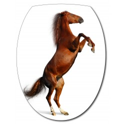 Sticker Abattant de WC Cheval