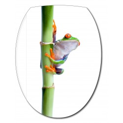Sticker Abattant de WC Grenouille Bambou