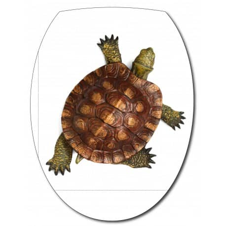 Sticker Abattant de WC Tortue