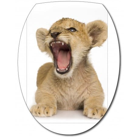 Sticker Abattant de WC Lionceau