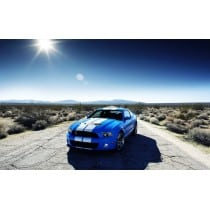 Stickers ou Affiche poster voiture Ford shelby gt500