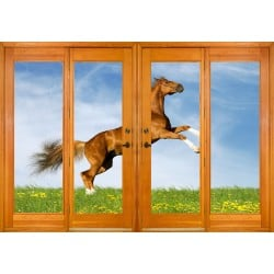 Stickers fenêtre trompe l'oeil Cheval