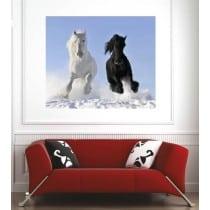Affiche poster chevaux