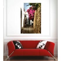 Affiche poster ruelle fleurie