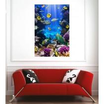 Affiche poster poissons tropicaux