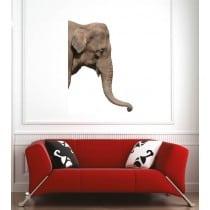 Affiche poster élephant
