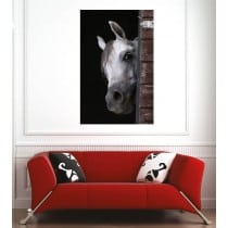 Affiche poster cheval blanc