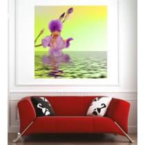 Affiche poster orchidée eau