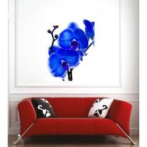 Affiche poster orchidée bleu