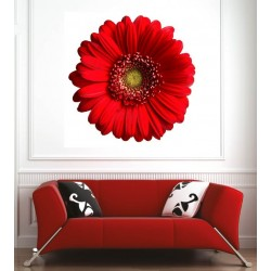 Affiche poster fleur rouge
