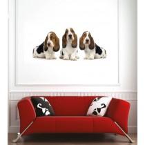 Affiche poster chiens 3