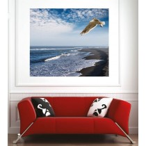 Affiche poster mouette