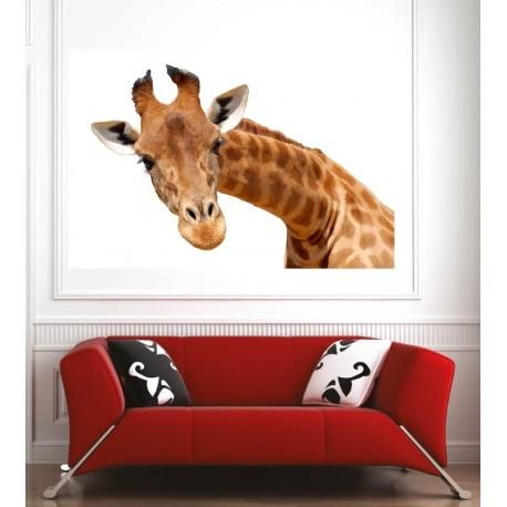 Affiche poster girafe