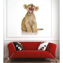 Affiche poster lionceau