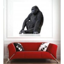Affiche poster gorille profil