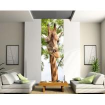 Papier peint lé unique Girafe