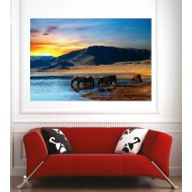 Affiche poster paysage mer montagne chevaux