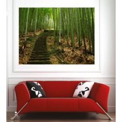 Affiche poster escaliers bambous