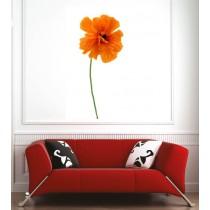 Affiche poster fleur