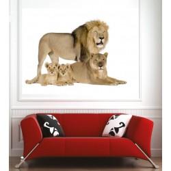 Affiche poster famille lion