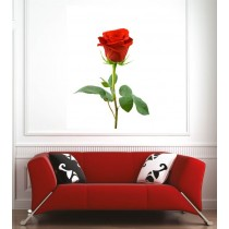 Affiche poster rose rouge