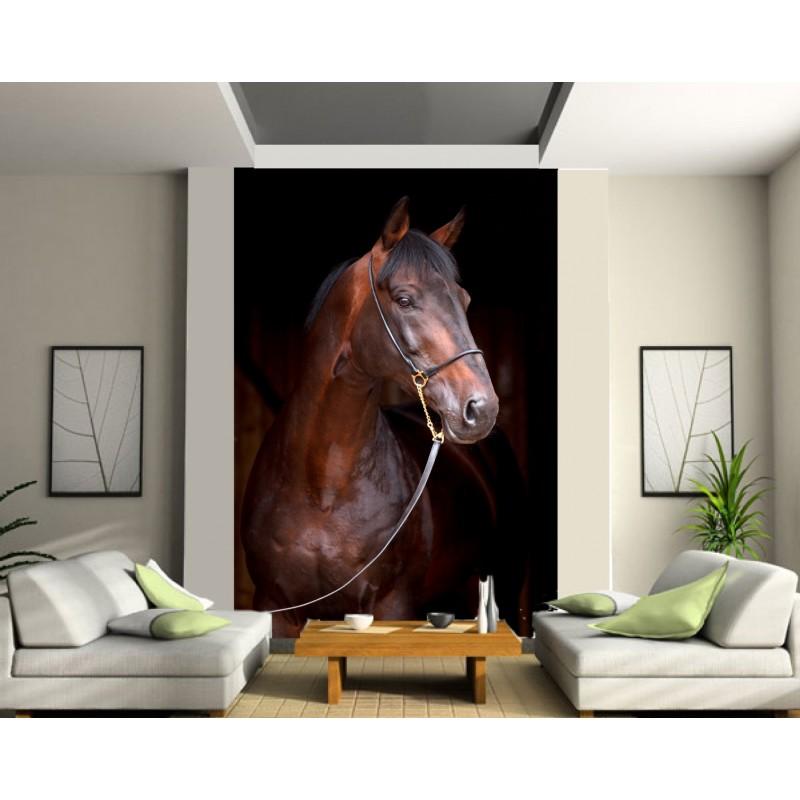papier peint g ant cheval art d co stickers. Black Bedroom Furniture Sets. Home Design Ideas