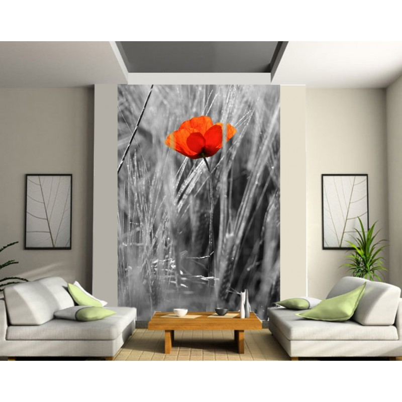 papier peint g ant coquelicot art d co stickers. Black Bedroom Furniture Sets. Home Design Ideas