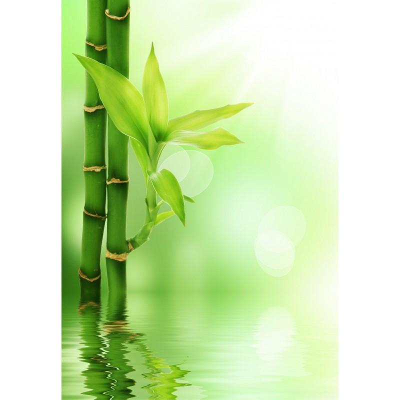 papier peint g ant bambous art d co stickers. Black Bedroom Furniture Sets. Home Design Ideas