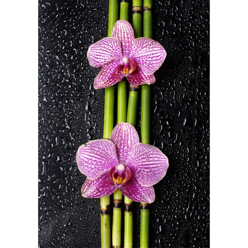 papier peint g ant orchid e bambous art d co stickers. Black Bedroom Furniture Sets. Home Design Ideas