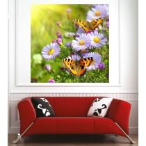 Affiche poster fleurs papillons