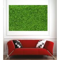 Affiche poster pelouse