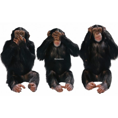 Sticker chimpanzés-expression