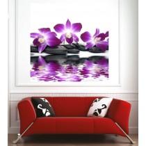 Affiche poster galets orchidée