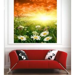Affiche poster champ de fleurs