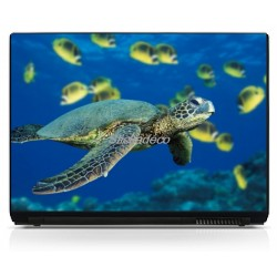 Stickers PC portable Tortue