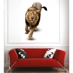 Affiche poster lion