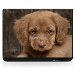Sticker ordinateur portable Chiot